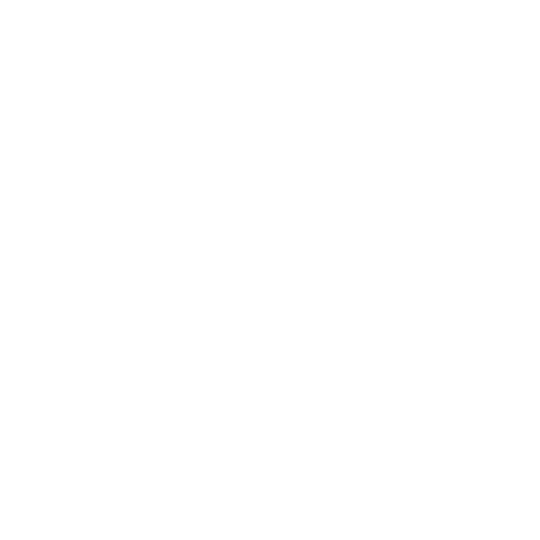 Basiswebsite icon