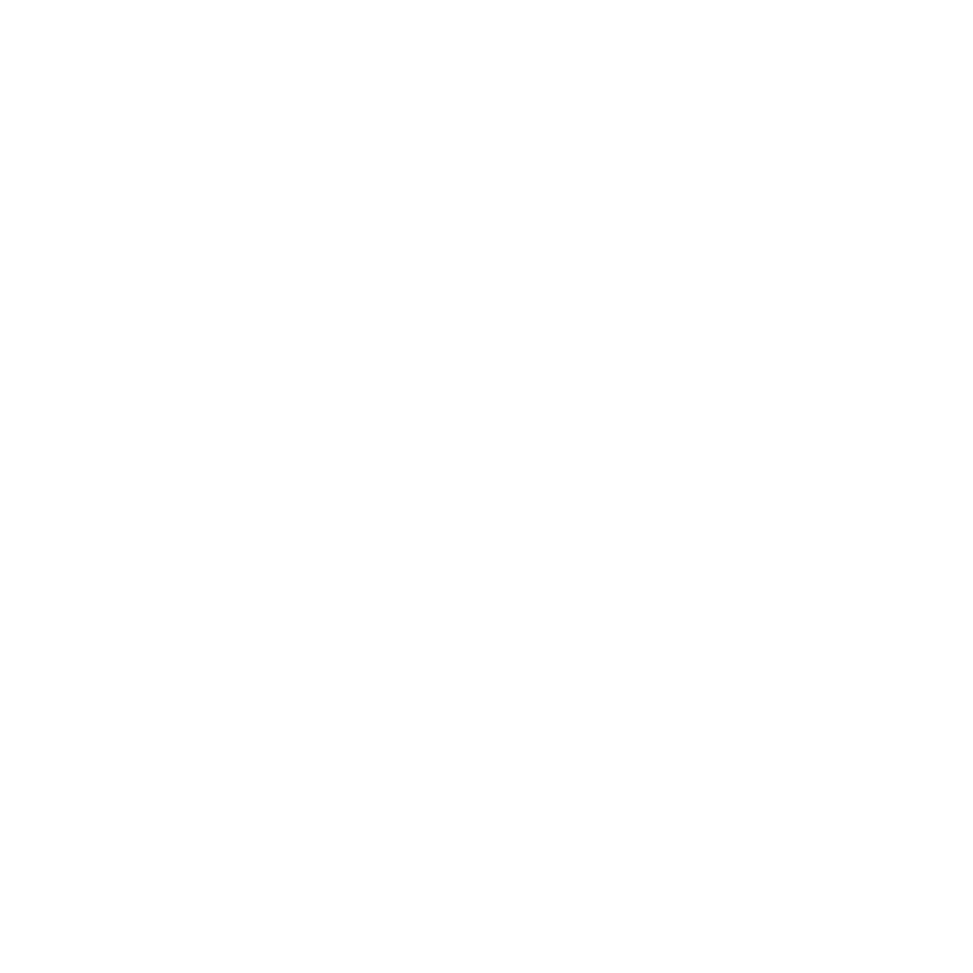 Maatwerkwebsite icon